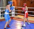 Зимний турнир по боксу