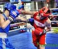 Кувшиновские боксеры на пьедестале почета