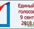 Председатель избирательной комиссии Тверской области рассказала о предварительных результатах выборов