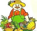 Специалисты  филиала ФГБУ «Россельхозцентр» по Тверской области подготовили рекомендации для садоводов