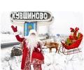 Новогодняя сказка пришла в Кувшиново