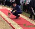 Кот к празднику: тверские мурлыки хвастаются усами и общением с властью