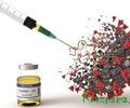 Вакцинация – стоп коронавирус!