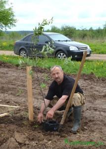 В рамках празднования 70-летия Победы в Великой Отечественной войне в нашем городе был заложен яблоневый сад