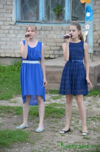 День Борковского сельского поселения