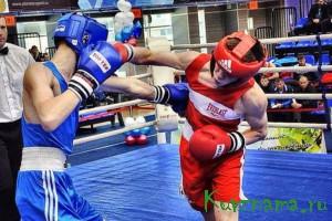 Наши боксеры  наша гордость