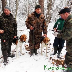 В Кувшиновском районе стартовали 18-е ежегодные межрегиональные состязания гончих собак
