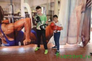 Местные боксеры