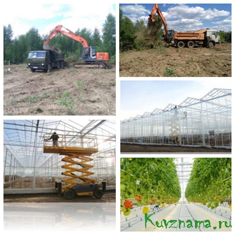 Тепличный комплекс «Кувшиновский»: инвестиции в проект составят более 4,6 млрд.
