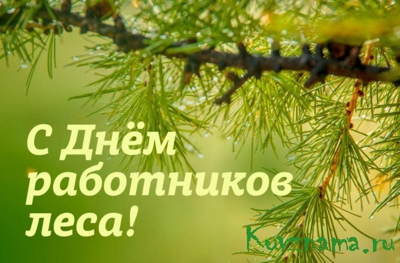 Поздравление главы Кувшиновского района с Днем работника леса