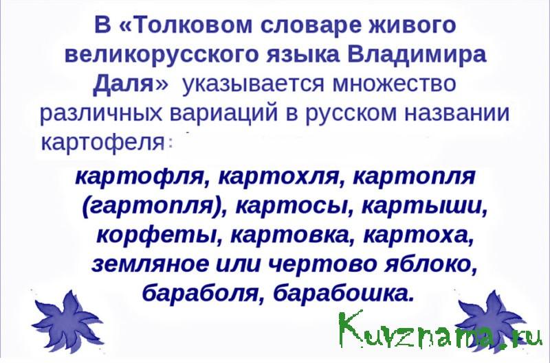 «Государь по прозванию Словарь»